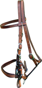 Leather Endurance Bridle