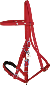 Endurance Bridle Red Synthetic