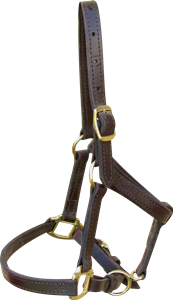 Standard Leather Halter